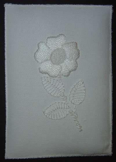 Dog rose postcard