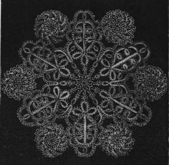 Chrysanthemum doily from Bath Tatting Book