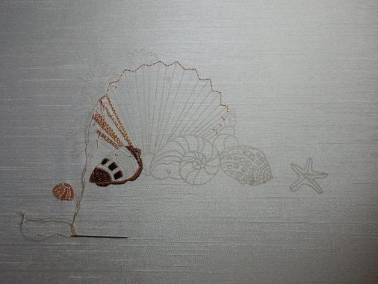 seashell_20161218