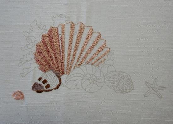Seashells - 2017-03-12