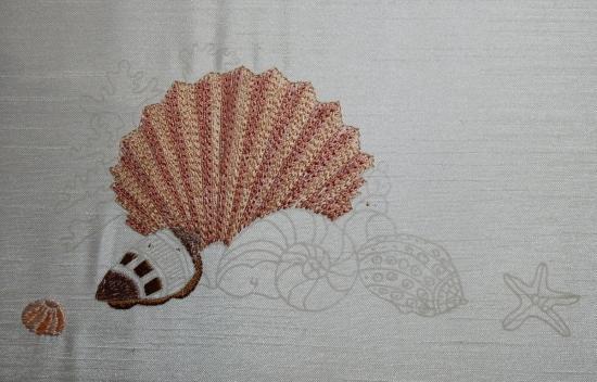 Seashells - 2017-04-23