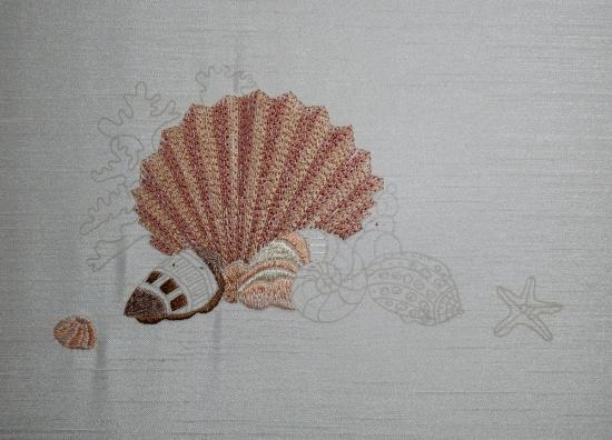 Seashells - 2017-05-14
