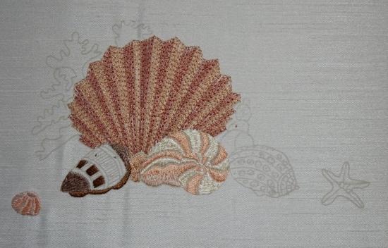 Seashells 2017-06-25