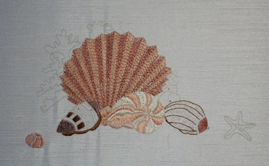 Seashells 2017-07-16
