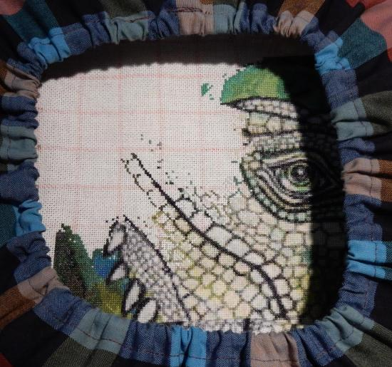 Green Iguana - 2019-07-21