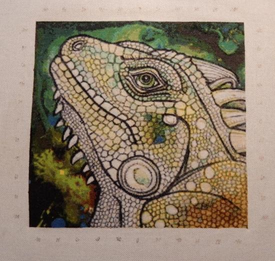 Green Iguana - Finished!