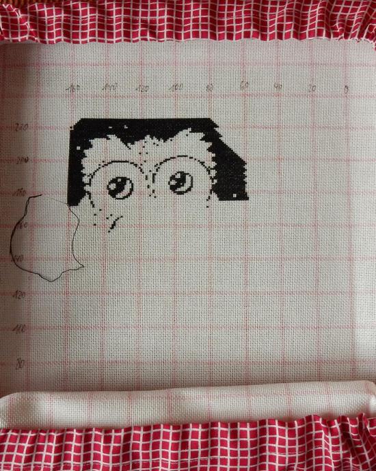 Prism Owls - 2020-01-26