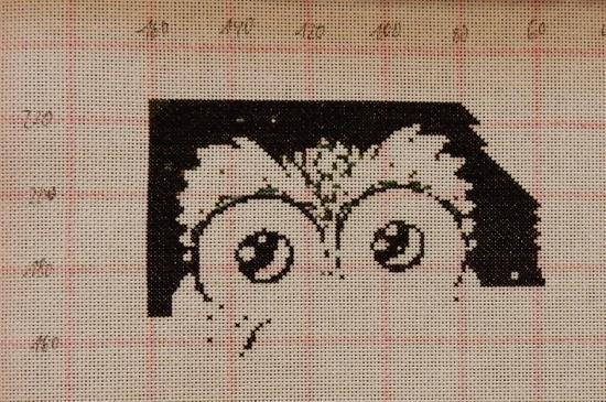Prism Owls - 2020-02-16